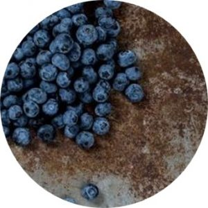 Project Blueberry Pie